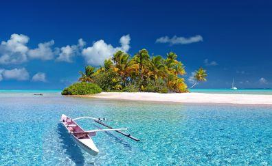 South sea, island, palm tree, boat, beach, france