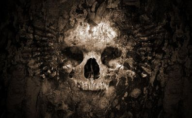 Skull, dark, art