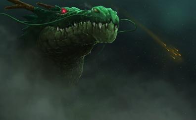 Dragon muzzle artwork