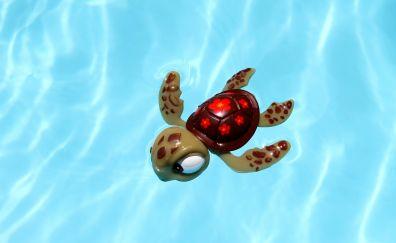 Turtle, pool toys