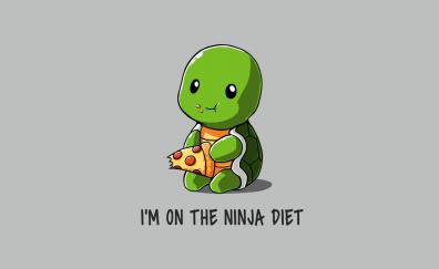Humor, turtle, eating pizza