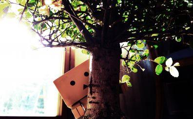 Danbo amazon paper box behind tree