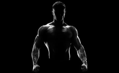 Muscles, fitness, male model, monochrome