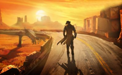 Fallout: New Vegas video game, road