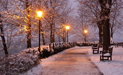 Garden, sunset, winter, benches, snowfall, 4k