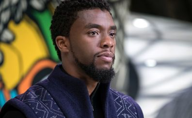 Chadwick Boseman, actor, celebrity, Black Panther, movie