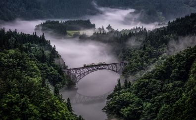 Aerial view, bridge, train, fog, trees