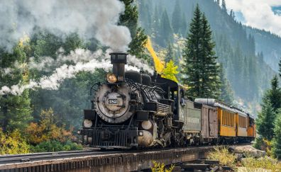 Steam engine, train, vehicle, forest, railroad, 4k