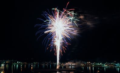 Salute, celebrations, fireworks, night