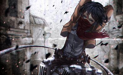 Mikasa Ackerman, mask, attack on titan, anime girl