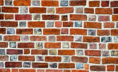 Bricks wall, wall, surface
