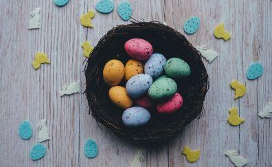 Easter, colored eggs, quail eggs