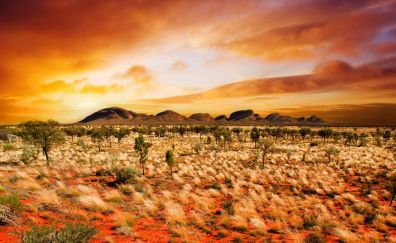 Kata tjuta australia landscape