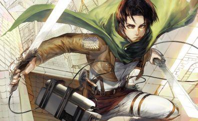 Levi ackerman, attack on titan, fight, anime