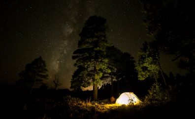 Camping with tent under night sky