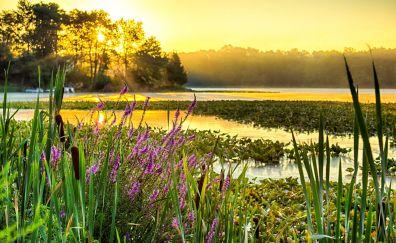 Webster lake sunrise
