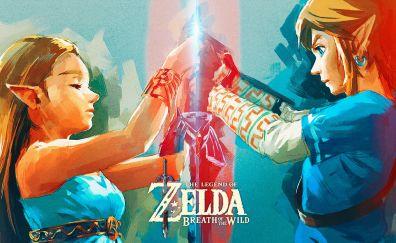 The Legend of Zelda: Breath of the Wild video game, zelda