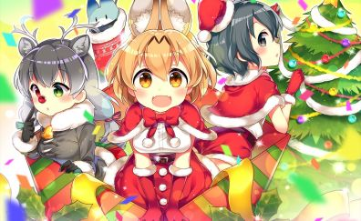 Anime girls, kemono friends, christmas