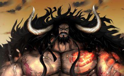 Kaidou, hundred beasts, horns, anime