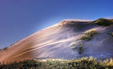 Denmark, beach, dunes, landscape