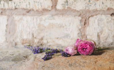 Wedding flowers, bouquet, wall