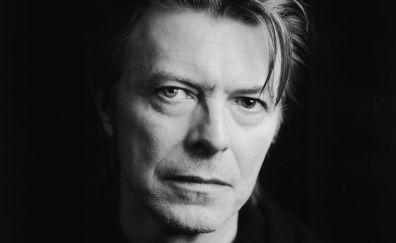 David Bowie, musician