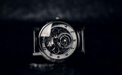 Luxury watch monochrome