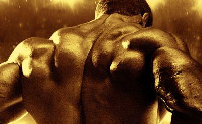 Body building, fitness