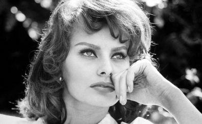 Sophia Loren, actress, monochrome