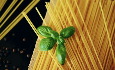 Spaghetti, basil, noodles, pasta, food