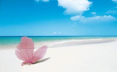 Playa Paraiso, Cayo Largo, Cuba beaches