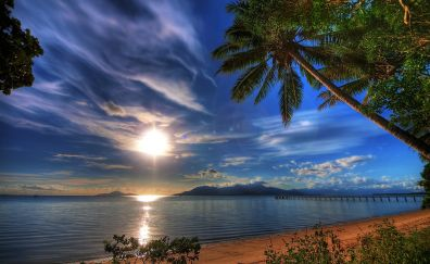 Tropical beach, sunset, palm trees