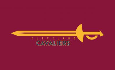 Basketball team cleveland cavaliers fan art