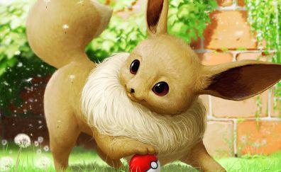 Eevee, Pokemon, anime