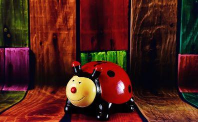 Ladybug, toy