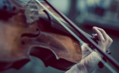 Violin, music, hands
