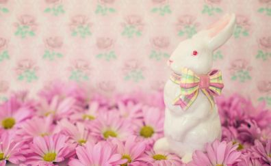 Easter bunny, flowers, daisies, pink