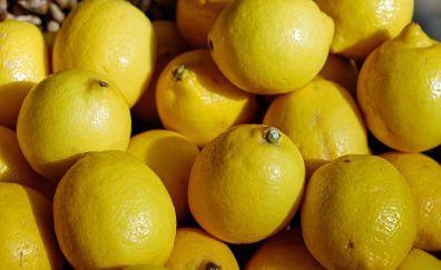 Lemons fruits, yellow