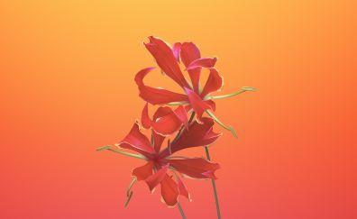 ios 11, flowers, gloriosa