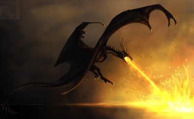 Dragon, fire, fantasy, art