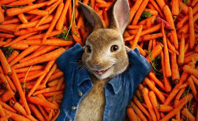 Peter rabbit, 2018, animation movie, 4k