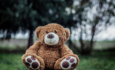 Bokeh, smile, teddy bear, toys