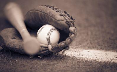 Baseball bat, ball and glove, close up