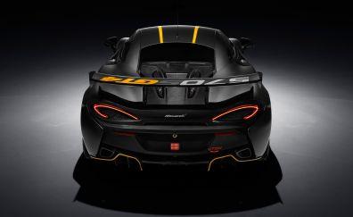 McLaren 570S, sports, black car, rear view