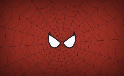 Spider man, spider web
