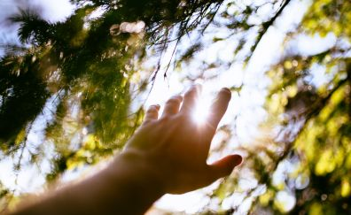 Hands and sun rays