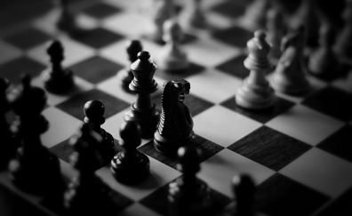 Chess board monochrome