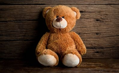 Toy, teddy bear