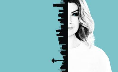 Grey's Anatomy, Ellen Pompeo, tv show, poster