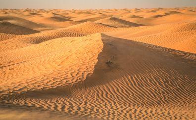 Tunisia, Sahara, desert, dunes